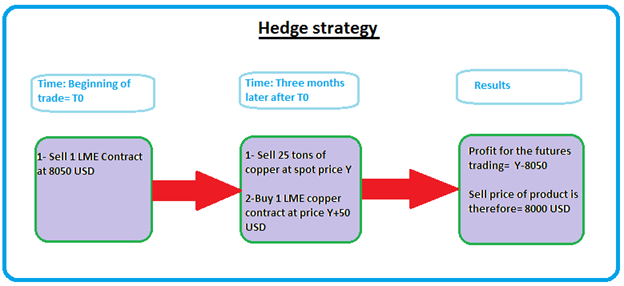 Hedging strategies using options